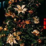 Erschaffe einfach deine eigenen Weihnachtsbräuche!