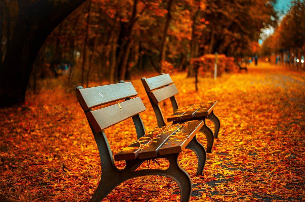Beginne jetzt deine Herbstplanung