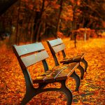 Herbstplanung: Beginne deine Erfolgsplanung JETZT