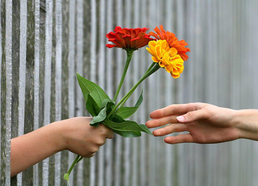 Lieber geben oder nehmen