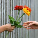 Geben oder Nehmen: Weshalb du erst investieren musst
